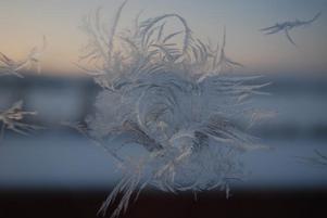 Frostigt vardagsrumsfönster på Sjövägen i Brunflo Foto: Jonas Engelheart
