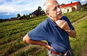 """Arne Källman har drivit odlingen i 30 år och säger att det är både gamla och nya kunder som kommer och plockar. """"Det är bra stämning här, folk skrattar mellan jordgubbsgångarna"""", säger han."""