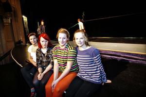 cirkusarbetare. Frida Brytzer, Kim Törnberg, Anna Adolfsson och Ella Salvin är några av dem som jobbat med föreställningen.