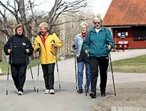 Foto: NICK BLACKMON Friskvård. Aila Bergström, Barbara Johansson, Lena Wilund och Berith Lundsten var några av de deltagare som i går avslutade socialkontorets rehabiliteringssatsning med stavgång i Högbo. - Det har varit jättebra. Det är nyttigt att träffas och få se att det finns andra i samma situation. Det är en bra början på väg tillbaka, säger Barbara Johansson.