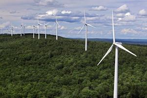 Utbyggnaden av vindkraften i Sverige riskerar förstöra stora naturvärden, menar artikelförfattarna, och nu uppmanar de politikerna att dra i nödbromsen.