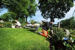 Trädgårdsarbete är ett typiskt sommarjobb.