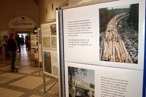Utställningen om bioenergikombinatet finns på Folkets hus till idag.Foto: Carin Selldén