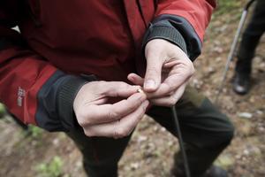 Anders Hansson visar upp en bränd benbit från något djur.