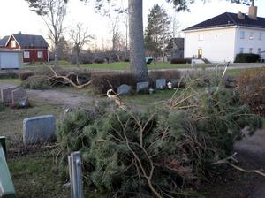 Kraftiga grenar blåste ner över några gravar på kyrkogården på Sollerön.
