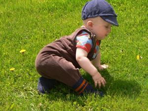 Retro! Sonen, Magnus på besök med barnbarnet Alfred 10 månader. För fina kläder att vara på gräset tycker farmor så fram med pappas urstyrelsel, 31 år gammalt. Från topp till tå. Snacka om återvinning. Första gången Alfred är så nära en maskros och kolla koncentrationen.Ibland lyckas även farmor att ta kort trots sonens klagan att jag aldrig lär mig finesserna. Visst är han söt?