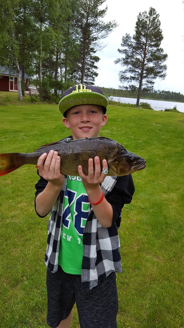Även Eddie Nermoen från Lillhärdal fick en finfin aborre. Denna vägde 1,35 kilogram och fångades i Olingsjön.