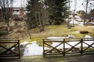 Snön har snart smält bort på baksidan och det är första våren som familjen har en egen trädgård. Det kliar i Idas gröna fingrar.