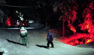 Rött ljus i Trollskogen.