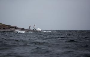 I tävlingen ska deltagarna simma 6,8 kilometer - här ser ni fyra deltagare från fjolårets upplaga som just är i full färd med att äntra det kalla havsvattnet.