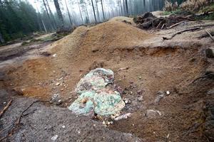 Enligt miljökontoret kan nedskräpningen vara miljöbrott.