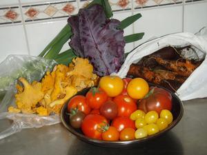Rotfrukter, kål och tomater från Grönlund, lite av svampen jag plockade i Norbergsskogen. Härliga gåvor och håvor.
