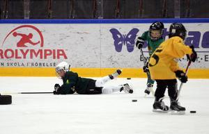 Till deltagare i Jämtkrafts Hockeyskola, som startade 2010, finns i dag över 80 låneutrustningar. Det är en del av arbetet i projektet för att öka tillgängligheten för hockeyutövandet.