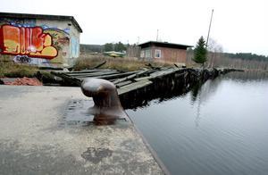Mariebergssågen anses vara det förorenade området i landet som sprider mest hälsofarliga dioxiner ut i havet.