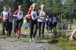 I helgen arrangerades orienterings DM i Härnösand med flera framgångar för Sundsvall.