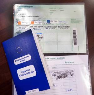 Alla papper för utlandsresan är klara.