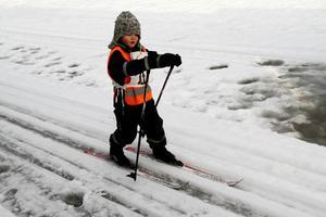 Femåriga Alvin Rodin höll koll på skidor och stavar.