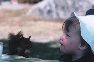 Vid en fikastund på Djäkneberget hoppade ekorren upp på bordet ett antal gånger och  hur vi än försökte mota bort honom så kom han tillbaka.