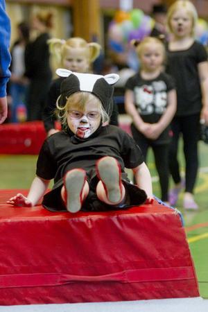 Cirkushunden Malin Eriksson, fem år, höll tungan rätt i mun vid gårdagens uppvisning.