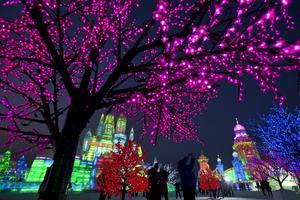 Smyckade träd i Harbin.