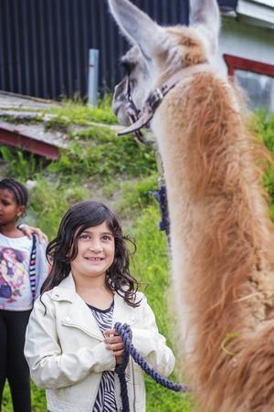 Tara Morady höll i laman med skräckblandad förtjusning.