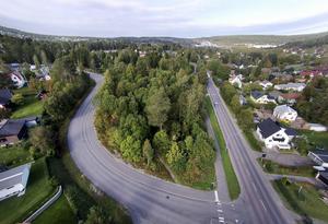 Det berörda området ligger i skogen i närheten av Hagaskolan. Bild: Jan Olby