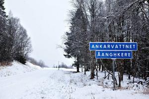 Det blir ett stort projekt i Ankarede om den föreslagna vägen till Storjola blir verklighet. Samerna i området är dock kritiska till förslaget, eftersom vägen skulle gå rakt igenom kalvningslandet.