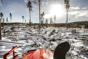 – När vi började att köra här var det skog överallt, nu ser det lite annorlunda ut, säger Sofia Jonasson.