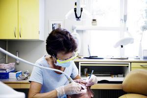Missade tandläkartider innebär miljonkostnader för länets skattebetalare.