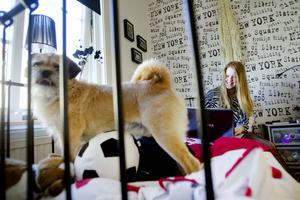 Claras järnsäng funkar också som soffa. Hennes hund Ebbot vill gärna vara med.