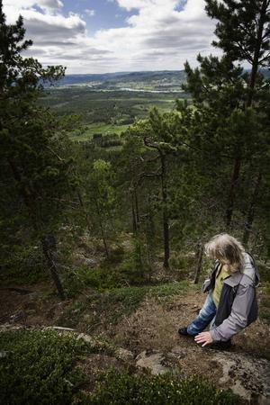 Utsikten är magnifik från toppen av Järvsöklack. Det sägs att man kan se till sju olika kyrksocknar härifrån.