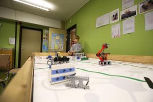 Noa Svedlund berättar att klassen valde skogen som tema. – Det är för att vi håller på att bygga en koja i skolskogen så vi tyckte det var lämpligt.