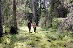Ellinor och Lotta Delin vill värna om miljön i Mombyåsens domänreservat.