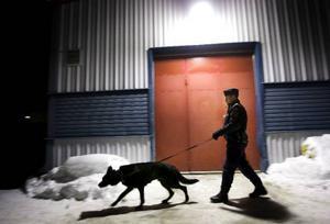 Klockan 03:51. Polisen Mats Milling och polishunden Dexter i Odenskogs industriområde, Östersund. Jakten på bovar har nu pågått i drygt sju timmar och ytterligare några timmar     återstår av nattpasset.