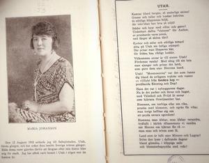 Stjärnor i natten. Bild ur Maria Johansons bok om mormonerna och Utah från 1927.