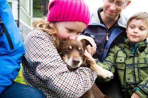 Dottern Signe Näslund kramar om dagens hjälte – hunden Hubbe. Pappa Tomas och Anton klappar honom och utlovar ett saftigt köttben som tack.