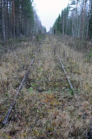 Inom någon månad ska förstudien om samhällsnyttan av att rusta upp södra delen av Inlandsbanan vara klar.