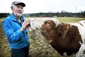 Småprat och kärlek är vad Sören Eriksson ger sina fyrbenta vänner. Han tycker det är viktigt att ha en nära relation till sina djur.