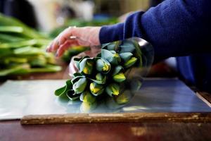 Tulpanerna buntas ihop och plastas vid en arbetsbänk i samma anläggning.