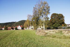 Detaljplanens område är ungefär1,3 hektar. Det är nu möjligt för andra fastighetsägare att köpa loss mark från kommunen.