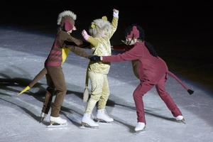 Många lockades till Timrå isstadion på söndagen för att titta på Timrå konståkningsklubbs uppvisning.   Ett 50-tal barn medverkade på isen och förberedelserna har pågått sedan i somras.