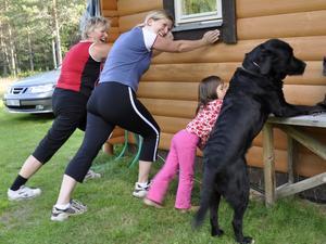Det är viktigt att man stretchar musklerna efter joggingturen. Här är det labradoren Wille som leder övningarna!
