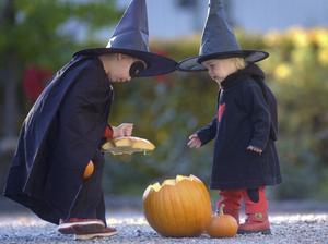 Om du ska hämta små häxor, vampyrer och varulvar ska du se till att vara nykter.
