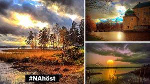 Bilden till vänster vann NA:s instagramtävling, #NAhöst. De båda andra bilderna är också tagna av Violetta Rokka.