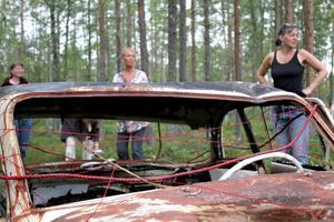 Anki Hallqvist har använt sig av två skrotbilar, som hon tycker är som vackra smycken på myren.