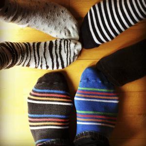 Dags att rocka sockorna.