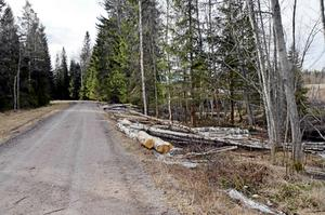 Platsen i Maj, Njurunda, söder om Sundsvall där Ramin Sherzaj hittades död.