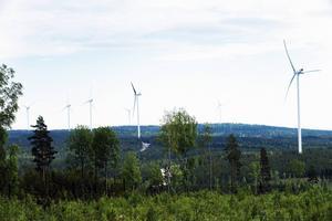 Ännu syns inga snurror i skogarna runt Tönsen.