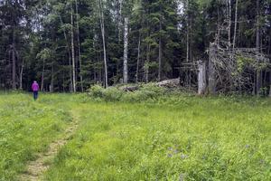 Alderängarna bjuder på stor variation, från slåtterängar till urskog, kärr, nipor och en forsande älv. Foto: Berit Djuse
