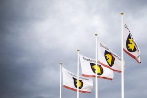 Ljusdals kommun har färre invånare trots flyttningsöverskott.